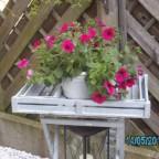 Unser Garten 2012 011
