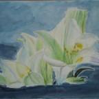 Lilie mit verändertem Hintergrund